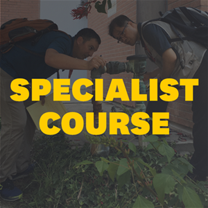 Specialist | 27-31 July 2020